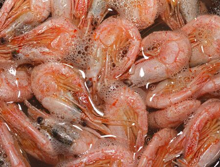 shrimps boiling in water, pattern