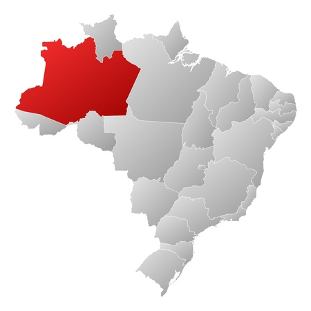 Political map of Brazil with the several states where Amazonas is highlighted. Vector