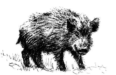 Hog pictogram. Stock Illustratie