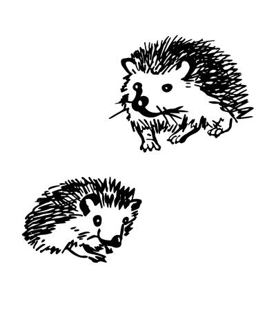 Hedgehog. Stylized drawing set. Vector illustration