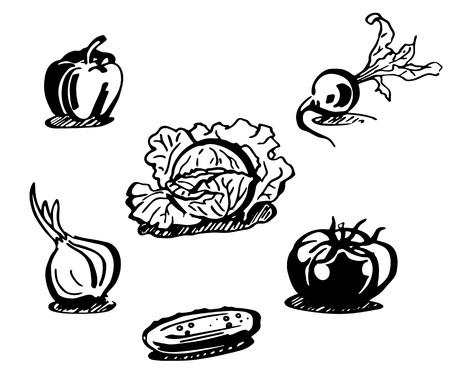 Vegetables set. Black and white line drawing. Vector illustration