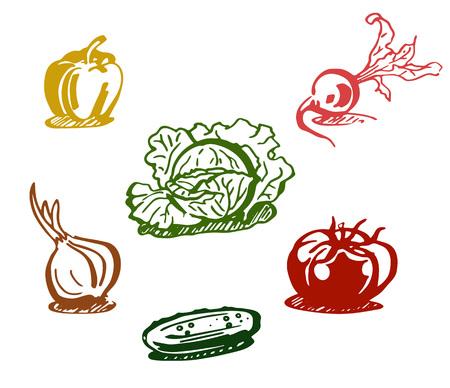 Vegetables set. Colored line drawing. Vector illustration