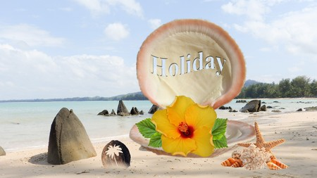 Beach picture, shell image