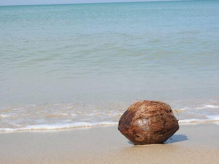 19276e26f57 Nut Beach Stock Photos. Royalty Free Nut Beach Images