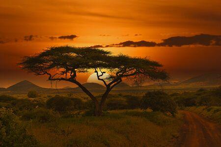Sunset and sunrise in the Tsavo East National Park, Tsavo West and Amboseli