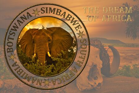 Africa sunrise and sunset with elephants and giraffes