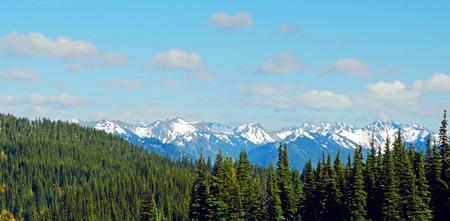 Scenic Nature Washington State - Hurricane Hill Trail, Olympic National Park.