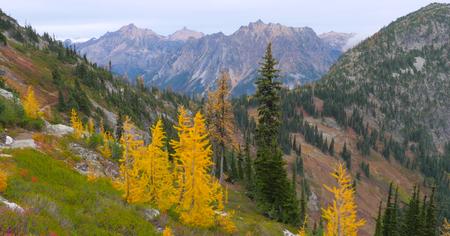 Beautiful Washington Autumn Nature Scenery - Maple Pass Loop trail.