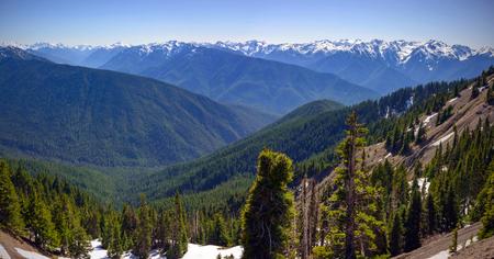 Scenic Nature Washington State - Olympic National Park.