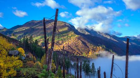 Beautiful Washington Autumn Nature Scenery - Fall foliage in Washington State.