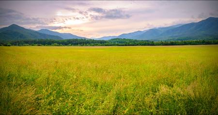 Great Smoky Mountains National Park Scenic Landscape . Reklamní fotografie