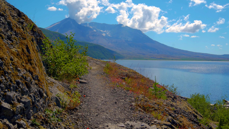 A beautiful View of Harmony Falls Trail at Mount Saint Helens.