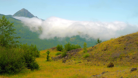 A beautiful View of Hummocks Trail at Mount Saint Helens.