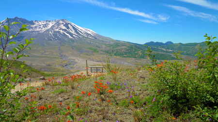 A beautiful View of South Colwater Ridge Trail at Mount Saint Helens.