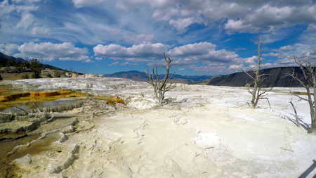 Stock image of Mammoth Hot Springs, Yellowstone National Park, USA. 版權商用圖片