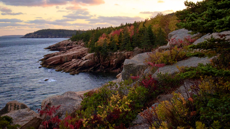 Beautiful fall colors of Acadia National Park in Maine USA. Stok Fotoğraf