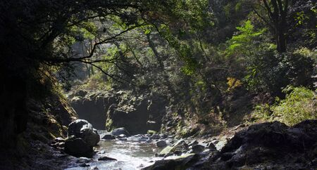 Beautiful image of Japanese landscape and national parks Stock fotó - 130116395