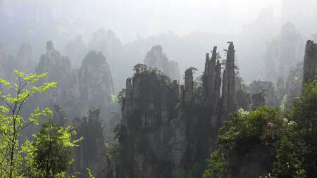 Zhangjiajie cliff mountain at Wulingyuan, Hunan, China.