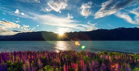 Stock image of beautiful panoramic natural landscape in New Zealand Stock fotó