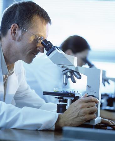 microscopy: Light microscopy