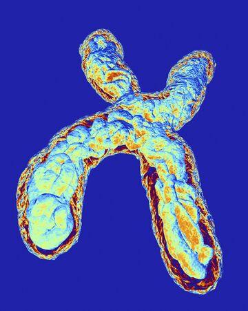 Chromosome, artwork