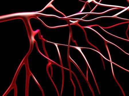 oxygenated: Arteries, computer artwork
