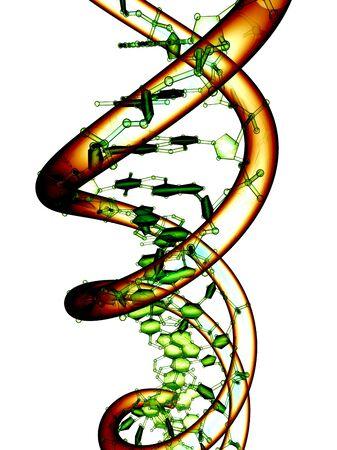 helical: DNA molecule, conceptual artwork