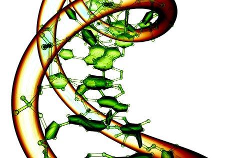 nucleotides: DNA molecule, conceptual artwork
