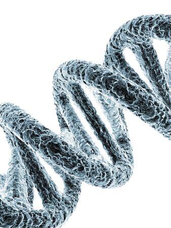 nucleotides: DNA molecule, artwork