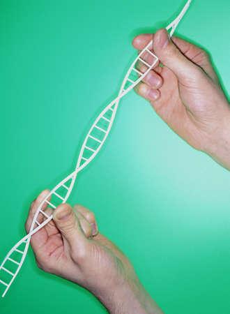 nucleotides: DNA helix LANG_EVOIMAGES