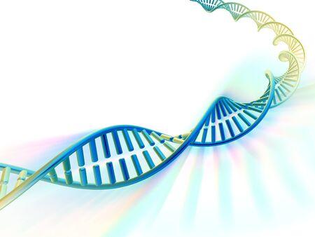 nucleotides: DNA molecule, computer artwork