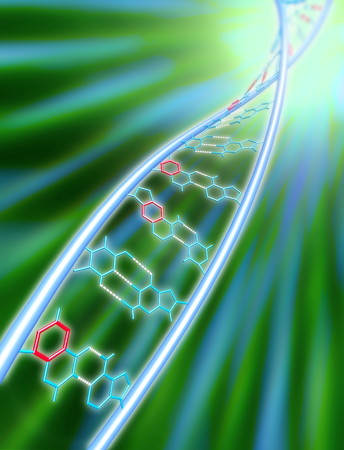 xDNA molecule