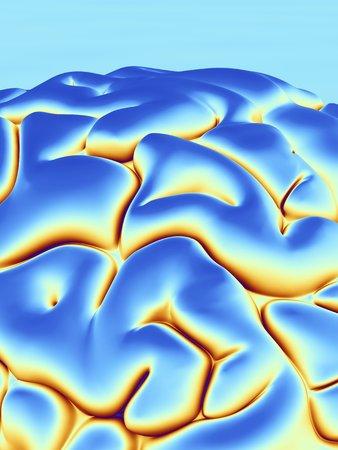 cns: Human brain, artwork LANG_EVOIMAGES
