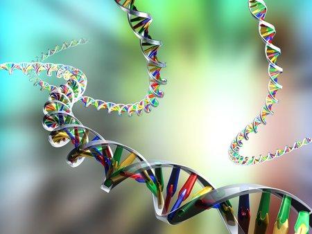 nucleotides: DNA molecules, computer artwork