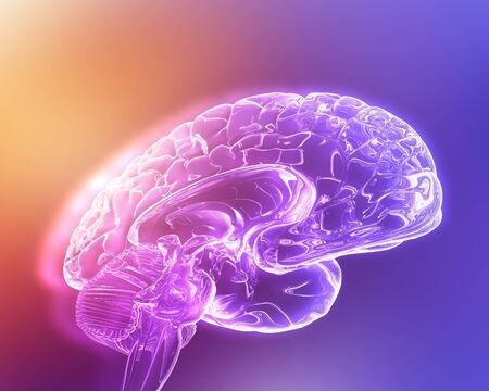 cns: Brain, computer artwork