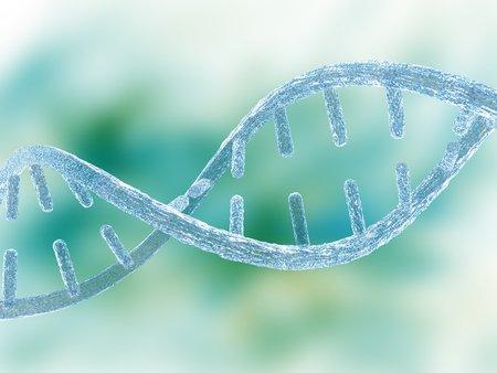 Unzipped DNA molecule,artwork