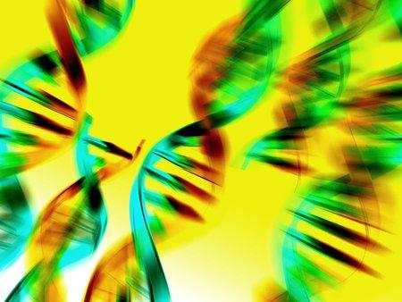 nucleotides: DNA molecules, artwork