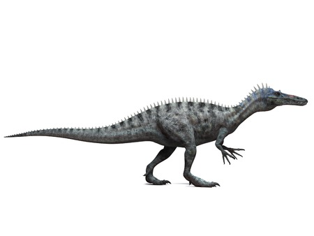 Suchomimus dinosaur,computer artwork.This dinosaur lived 110 to 120 million years ago during the middle of the Cretaceous period