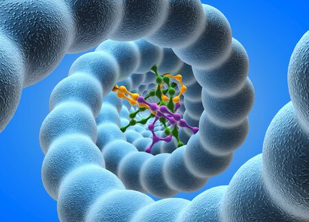 nucleotides: DNA,computer artwork.DNA (deoxyribonucleic acid) consists of two strands (blue) of sugar phosphates forming a double helix.Stretched between these are the nucleotide bases (multicoloured),consisting of guanine,cytosine,thymine and adenine.DNA encodes the