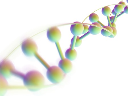 nucleotides: DNA molecule,computer artwork.DNA (deoxyribonucleic acid) is composed of two strands twisted into a double helix.DNA contains sections called genes,which encode the bodys genetic information LANG_EVOIMAGES