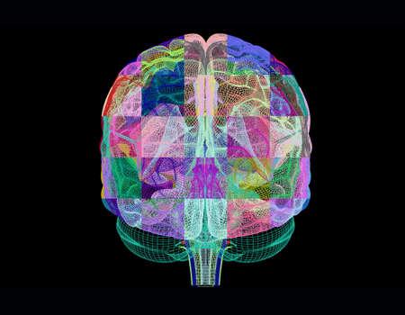 sistema nervioso central: Cerebro humano, ilustraciones de computadora