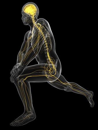 sistema nervioso central: Sistema nervioso central, obras de arte