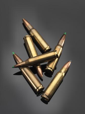 evidence bag: Bullets LANG_EVOIMAGES