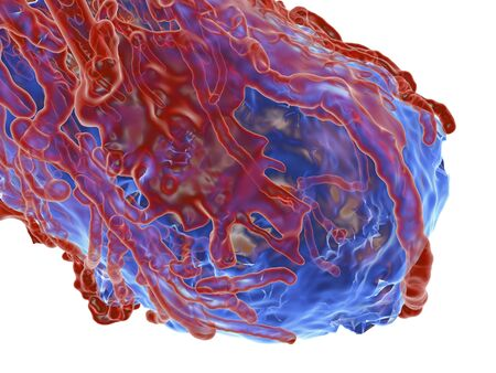 invade: Tumour,computer artwork. Tumours are caused by the uncontrolled growth of previously normal cells. The resulting growth (blue) can invade and damage surrounding tissue. Growing tumours are able to stimulate new blood vessel (red) growth which provides a d LANG_EVOIMAGES