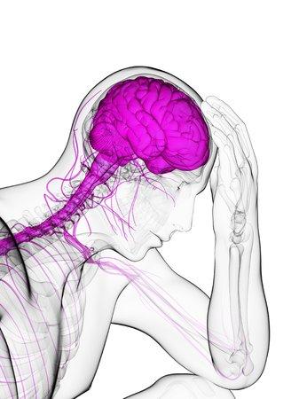 cerebrum: Depression,conceptual artwork