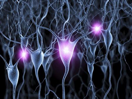 cns: Nerve cells,artwork