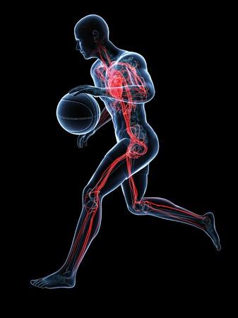 Basketball player,artwork LANG_EVOIMAGES