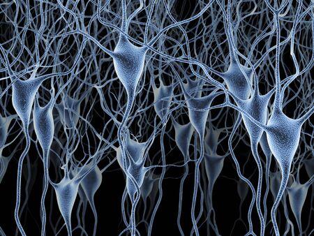 pyramidal: Nerve cells,artwork