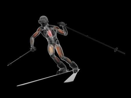Male musculature, artwork