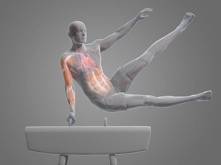 Gymnast,artwork